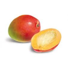 mango oil 100ml